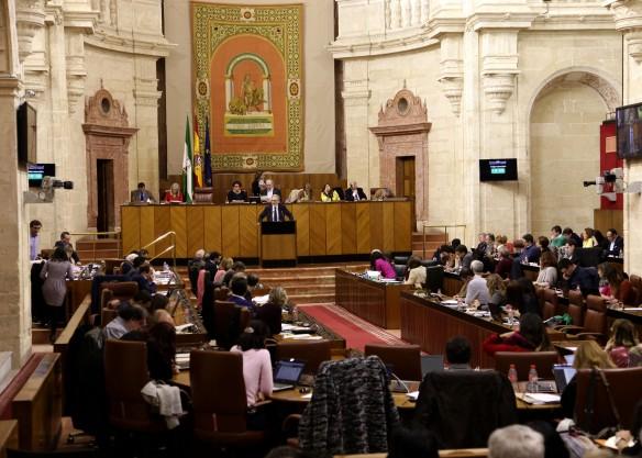debate-de-sanidad-en-el-parlamento-de-andalucia